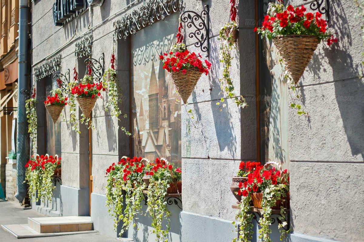 Ресторан Тбилисо на Сытнинской улице фото 14