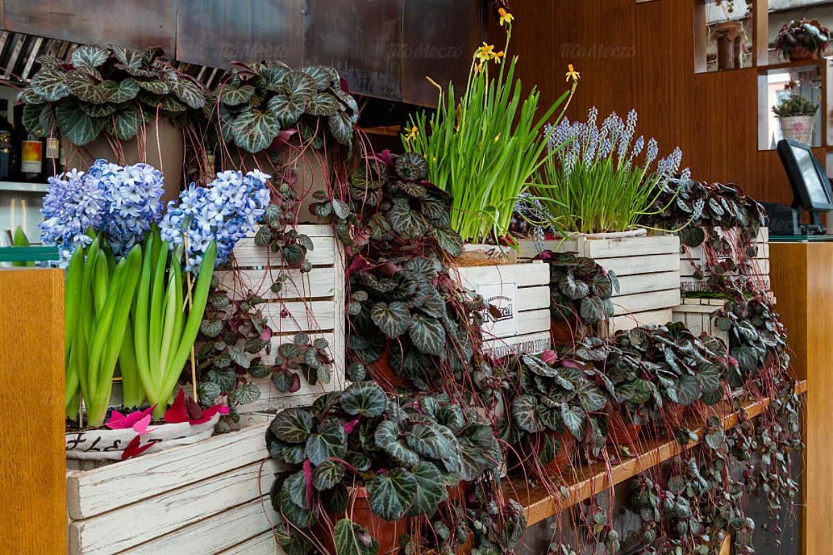 Ресторан Парк Джузеппе на набережной канала Грибоедова фото 20