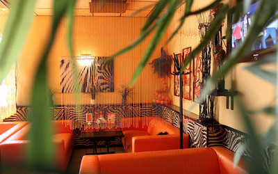Банкетный зал кафе Африка (Africa) на Московском шоссе фото 1