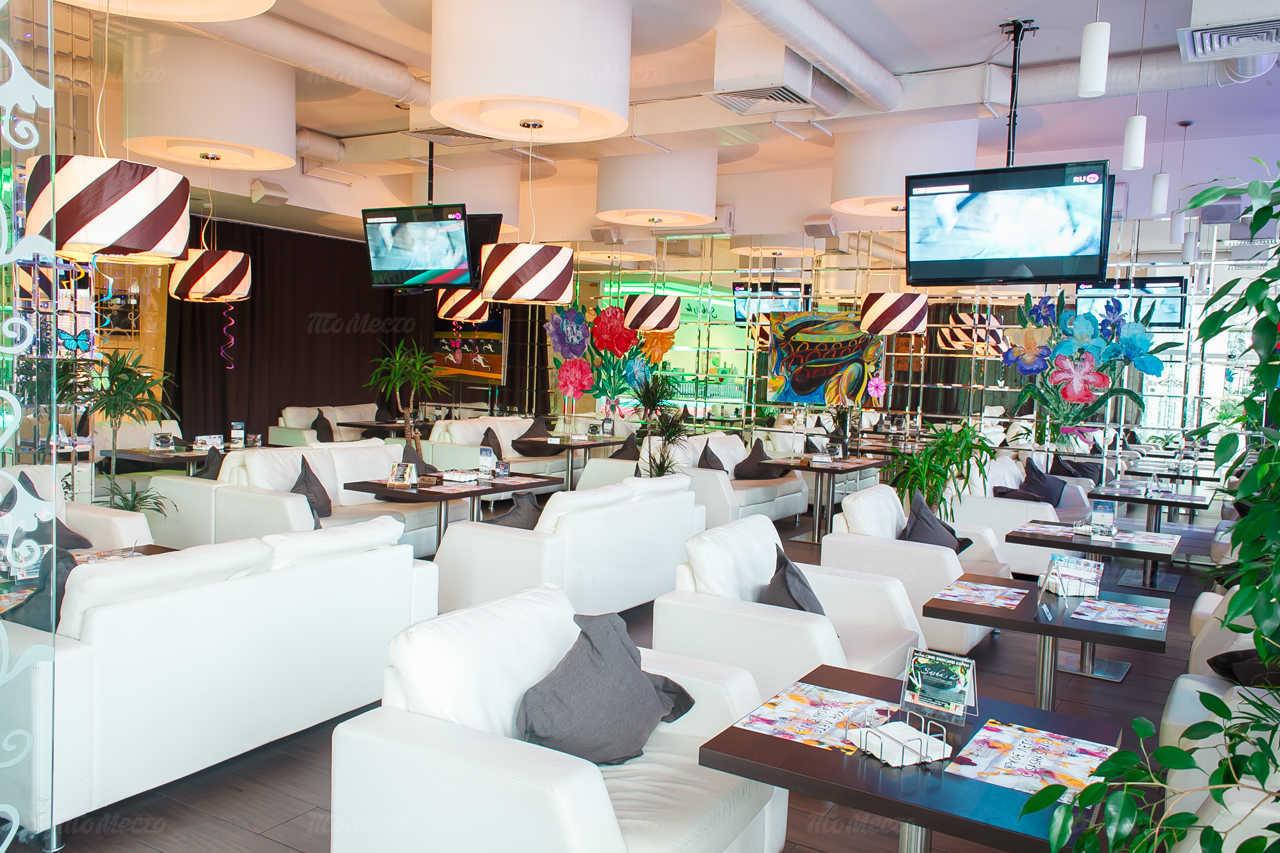 Бар, ресторан Sasha's bar на Выборгском шоссе