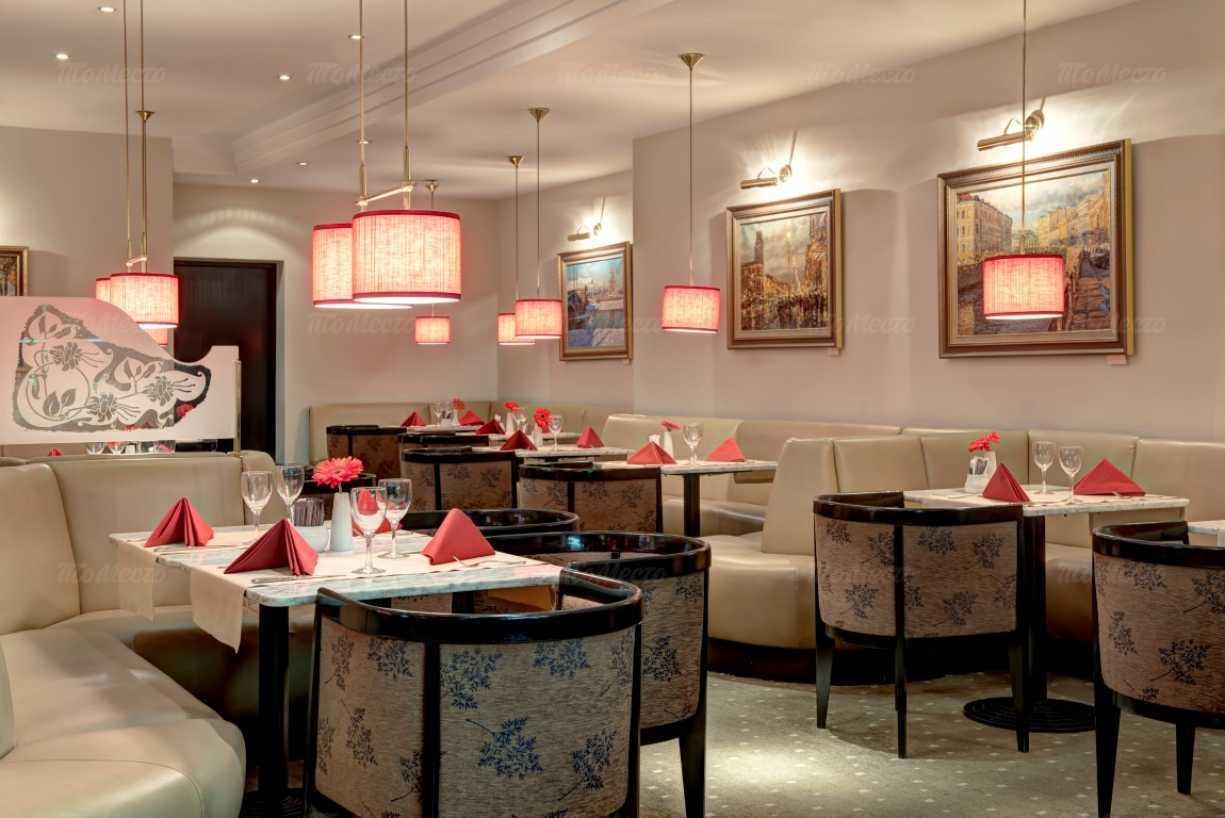 ресторан вена фото