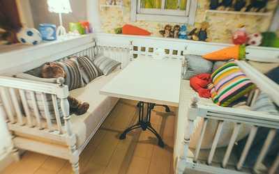 Банкетный зал кафе Все Свои (#ВСЕСВОИ) на Меридианной улице фото 3