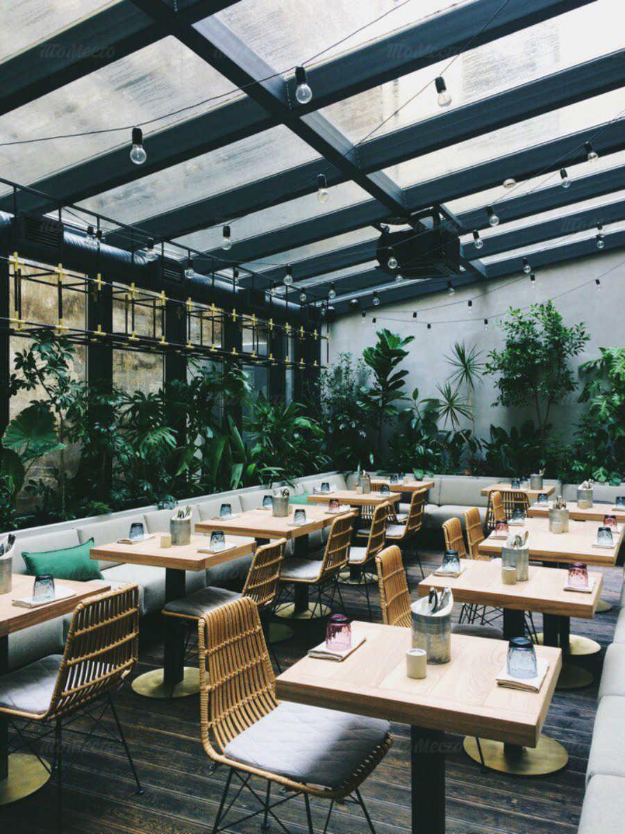 Кафе Jungle (Джунгли) на набережной канала Грибоедова фото 5