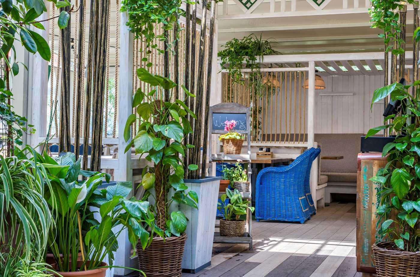 Ресторан Грузинские каникулы на Павшинском бульваре фото 5