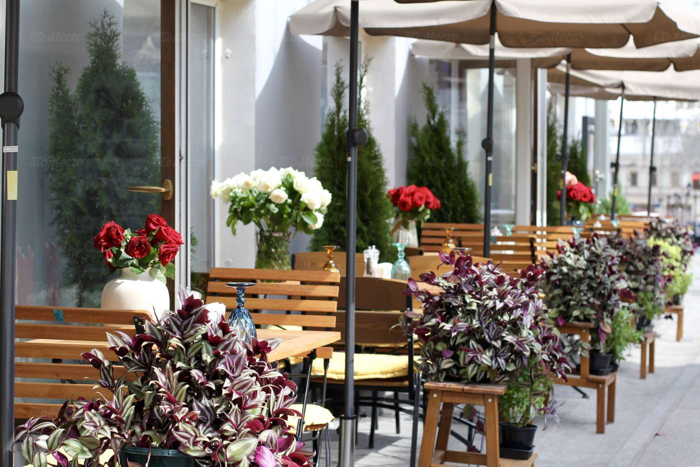 Ресторан IL LETTERATO (Литератор) На Большой Дмитровке фото 9