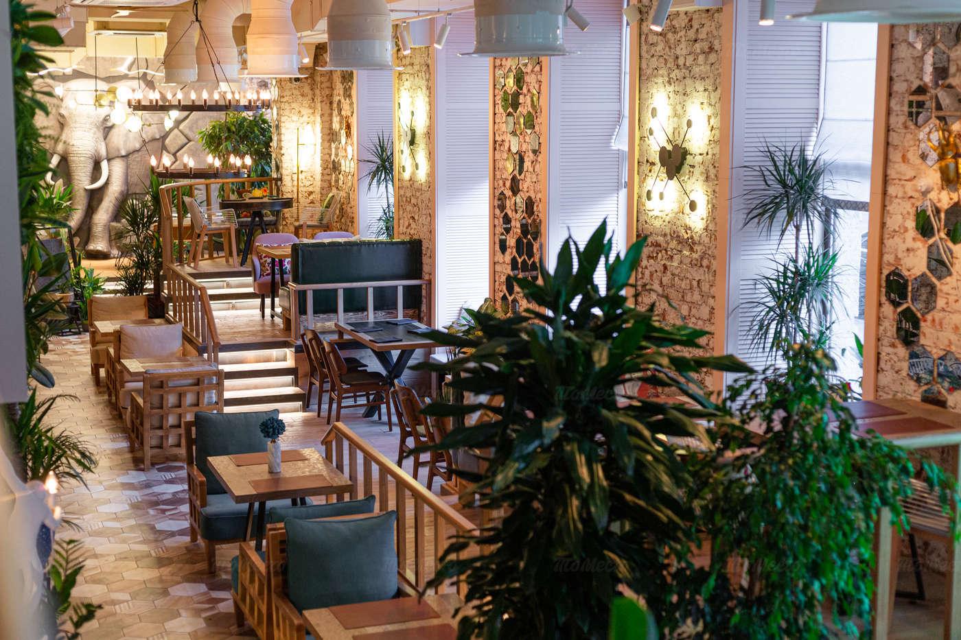 Ресторан Чанг (Chang) на Московском проспекте фото 5