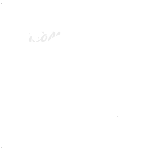 Paninaro