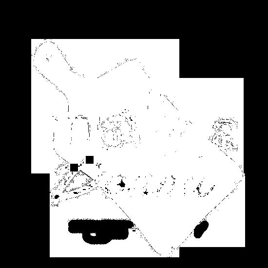 Mama Donna